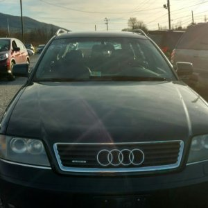 Audi Front on Wholesale Lot